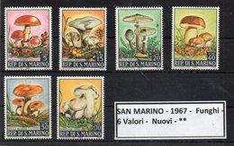 San Marino - 1967 - Funghi - 6 Valori - Nuovi - ** - (FDC9312) - Funghi