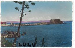 DEPT 83 : édit. La Cigogne N° 6963 : Presqu Ile De Giens La Tour Fondue Et Le Port - France