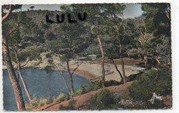 DEPT 83 : édit. Aris N° 108 : Port D Alon - France