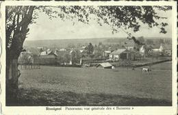 Rossignol -- Panorama Vue Générale Des Buissons.   (2 Scans) - Tintigny