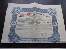 THE OVIEDO MERCURY MINES (1910) - Shareholdings