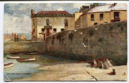 CPA - Carte Postale - Royaume Uni - Low Tide - Tenby - Harbour - 1907 (CP2205) - United Kingdom