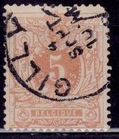 Belgium, 1881, Lying Lion, 5c, Sc#42, Used - 1869-1888 Lying Lion