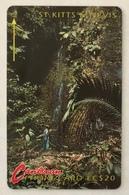 Waterfall - St. Kitts & Nevis
