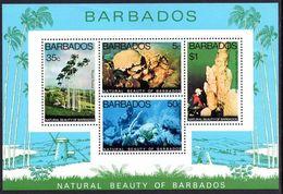 Barbados 1977 Natural Beauty Of Barbados Souvenir Sheet Unmounted Mint. - Barbados (1966-...)