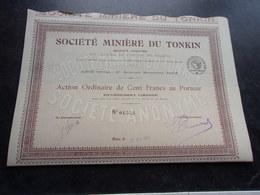 MINIERE DU TONKIN (action Ordinaire 100 Francs) - Actions & Titres