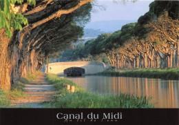 CANAL DU MIDI Au Fil De L Eau De Toulouse A SETE Atlantique A La Mediterranee 18(scan Recto-verso)MA421 - Autres Communes