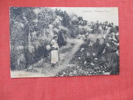 Cabylie Paysage Et Type Ref 2932 - Algeria