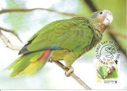 1993 - CAYMAN ISLANDS  - Amazone De La  Grande Ile Caiman -  Grand Cayman Parrot - Caïman (Iles)