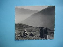 PHOTOGRAPHIE  LUZ SAINT SAUVEUR - 65 - Ferme LE BERGONS  - 1959  - 8,8 X 10,3  Cms -  Hautes Pyrénées - Luz Saint Sauveur
