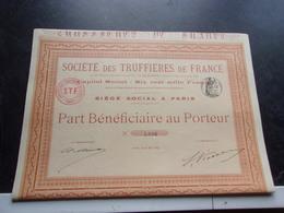TRUFFIERES DE FRANCE (1899) - Shareholdings