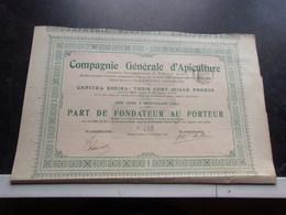 Compagnie Générale D'apiculture (1904) Neuvy Pailloux , Indre - Shareholdings