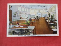 Interior Of Libby Museum Lake Winnipesaukee NH  ==ref 2933 - Museum