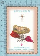 Fleurs De Terre Sainte- Image, Religion, Bethlehem - Religion & Esotérisme
