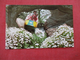 Disneyland - Matterhorn's Bobsled Run   Ref 2934 - Disneyland