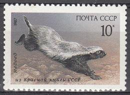 RUSSIA    SCOTT NO . 5555    MNH     YEAR  1987 - 1923-1991 USSR