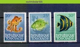 Mrg066 FAUNA VISSEN FISH FISCHE POISSONS MARINE LIFE TOGO 1964 PF/MNH # - Fische