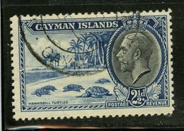 Cayman Islands 1935 2 1/2p Turtles Issue #90 - Iles Caïmans