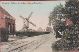 Essen Esschen Zicht Op Den Molen Windmolen Vue Sur Le Moulin  ZELDZAAM Geanimeerd Chromatografie Ingekleurd - Essen