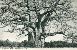 KENYA - A Baobab Tree Mombasa - British East Africa - Kenya