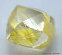 BEAUTIFUL NATURAL DIAMOND. INTENSE FANCY YELLOW NATURAL GEM DIAMOND OUT FROM A DIAMOND MINE - Diamante