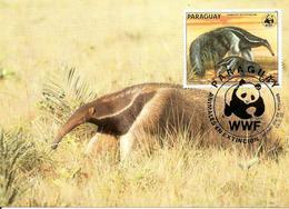 1985 - PARAGUAY - Giant Anteater - Fourmilier Geant - Paraguay