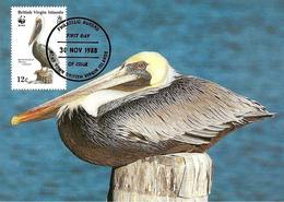 1988 - Road Town - British Virgin Islands - Brown Pelican - Vierges (Iles), Britann.