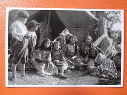 Tigani.gypsies - Reproductions