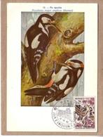 MONACO - CARTE FDC - OISEAUX - INSTITUT ROYAL DES SCIENCES NATURELLES DE  BELGIQUE - 58 - PIC EPEICHE - 1962 - Climbing Birds