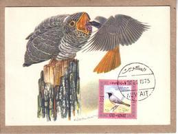 KOWEIT - CARTE MAXIMUM - OISEAUX - ILLUSTRATEUR LINSENMAÏER - COUCOU GRIS - 1975 - Cuckoos & Turacos