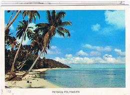 PAYSAGE  POLYNESIEN  1978   CPM  TBE - Polynésie Française
