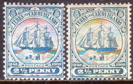 TURKS AND CAICOS ISLANDS 1900-04 SG #104,04a 2½d Both Shades MH Wmk Crown CA - Turks And Caicos