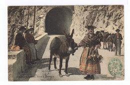 Route De Nice à Menton. Paysans Avec âne En Costume Local. (2683) - Personnages