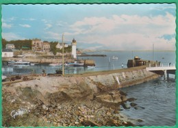 56 - Port Haliguen - Vue D'ensemble Du Port - Editeur: Artaud N°1 - Other Municipalities