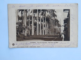 C.P.A. GUYANE : CAYENNE : Place Des Palmistes, Vue De La Rue Melé, Animé - Cayenne