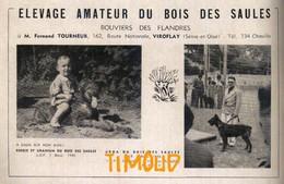 ELEVAGE DU BOIS DES SAULES / BOUVIERS DES FLANDRES / M. TOURNEUR / VIROFLAY / SEINE ET OISE  / PUB 1948 - Alte Papiere
