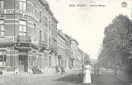 CPA / PK / AK   -  HASSELT  Avenue Bamps  ( Café ) - Hasselt