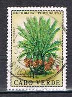 Dattes N°348 - Cape Verde