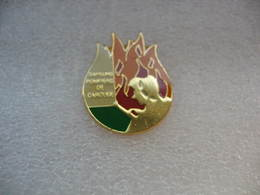 Pin's Des Sapeurs Pompiers De La Ville De CAROUGE - Bomberos