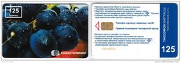 PHONE CARD KAZAKHISTAN  (KAZ4.7 - Kazakhstan