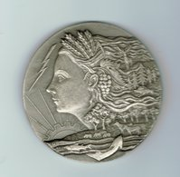 Médaille,Haute Marne En Argent 950% - Other