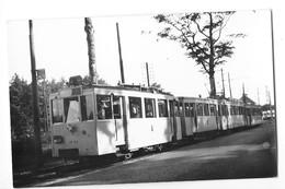 BASSCHAET POLYGOON  (Belgique) Photographie Format Cpa Terminus Tramway électrique 1951 - Brasschaat