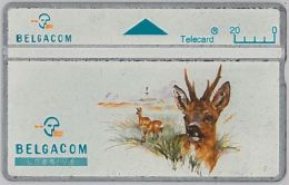 PHONE CARD - BELGIO (H.7.6 - Belgium