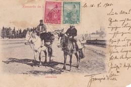 Argentinien 1901 Gest. - Ansehen!! - Argentina