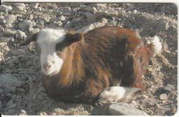 OMAN(chip) - Animal, Goat, Chip GEM3.3, 05/02, Used - Oman