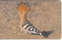 OMAN(chip) - Bird, Hoope, Chip GEM3.3, 05/02, Used - Oman