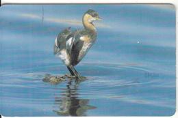 OMAN(chip) - Bird, Little Grebe, Chip GEM3.3, 05/02, Used - Oman