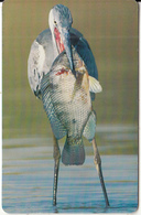 OMAN(chip) - Bird, Grey Heron, Chip GEM3.3, 05/02, Used - Oman