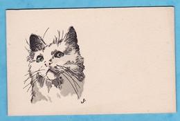 Chat Petite Carte Ancienne 110x70 A Volets Par Illustrateur ( Très Très Bon état ) V1202) - Cats