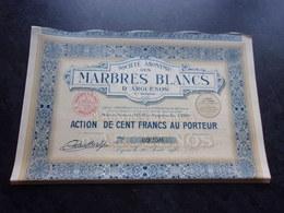MARBRES BLANCS D'ARGUENOS (haute Garonne) 1925 - Shareholdings